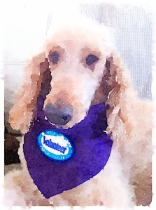 Waterlogue-Volunteer Sam