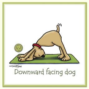 Yoga - Downward Facing Dog