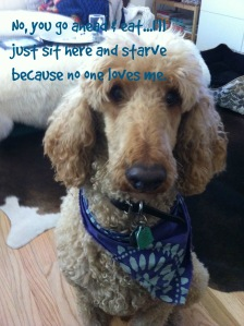 Eat & starve