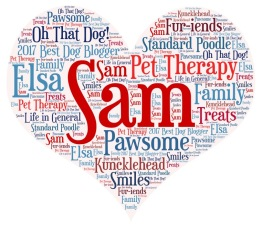 Word Cloud-Sam&Elsa